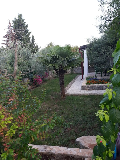 We are located on a hill in the bay Osibova (no sea view)