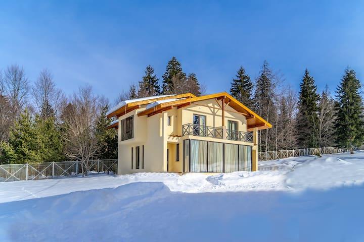 Villa by sunexpress bakuriani (Three-Bedroom )