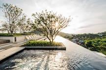 Swimming Pool & Roof Top