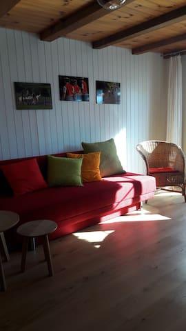 Heimelige 2 Zi- Wohnung im Luftkurort Gais - Gais