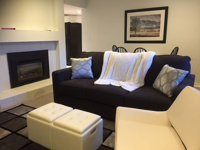 Cozy One Bedroom Private Apartment (sleeps 4)