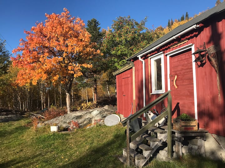The Wood Shack - a simple retreat in arctic nature