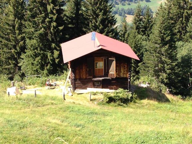 Zu Fuss auf den Berg ... - Truns - Stråhytte