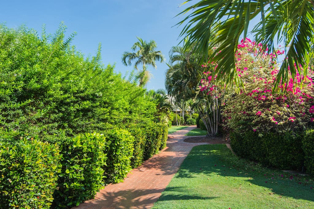 Well maintained tropical gardens.