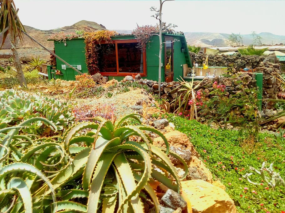 the eco-cabin as seen from the garden