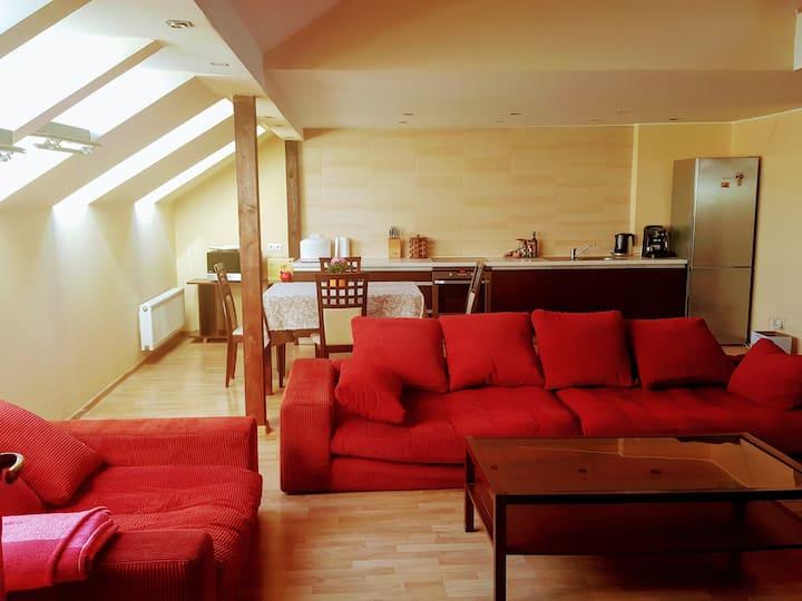 Spacious loft in heart of Kaunas 3 bedroom 110 kv