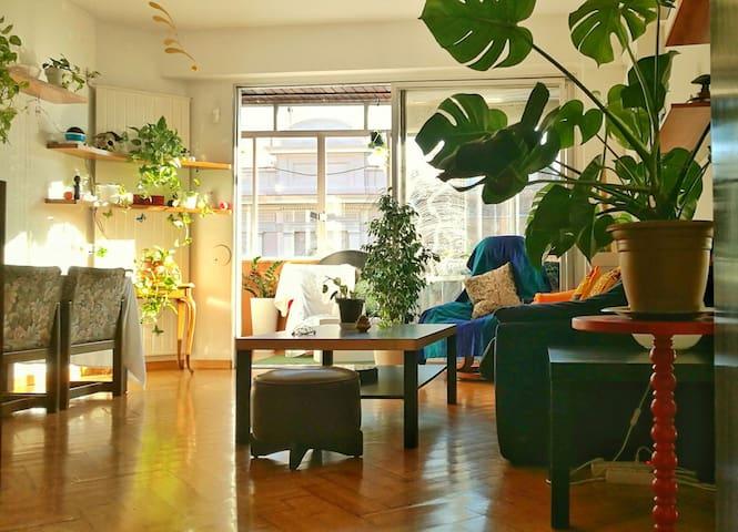 Selvita Interior / Barcelona / Urban little jungle