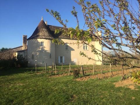 Charming Castle near by Saint Emilion