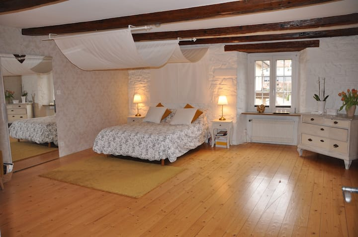 The baroque room - 5 kms from Basel (Bus & Tram)