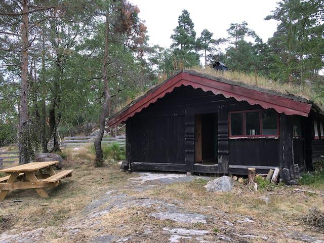 Hytta Heimro på Nyberg gård. Ligger ca 200 meter fra gård med husdyr. Ku, sau, gris og islandske hester.  Etter avtale tilbyr vi ridning for uøvde eller erfarne ryttere i ett flott natur område. Robåt med fiske muligheter. Jakt småvilt/elg.
