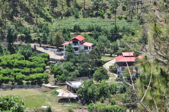 Villa in the jungle!! - Solan - 別荘