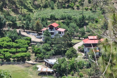 Villa in the jungle!! - Solan