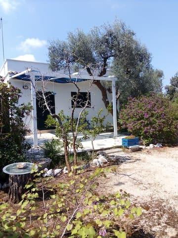 Salento, graziosa casa di campagna, 4 km dal mare