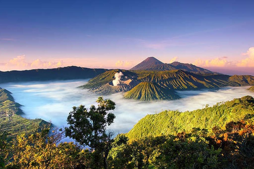 Bromo Tengger Semeru National park is near from the homestay