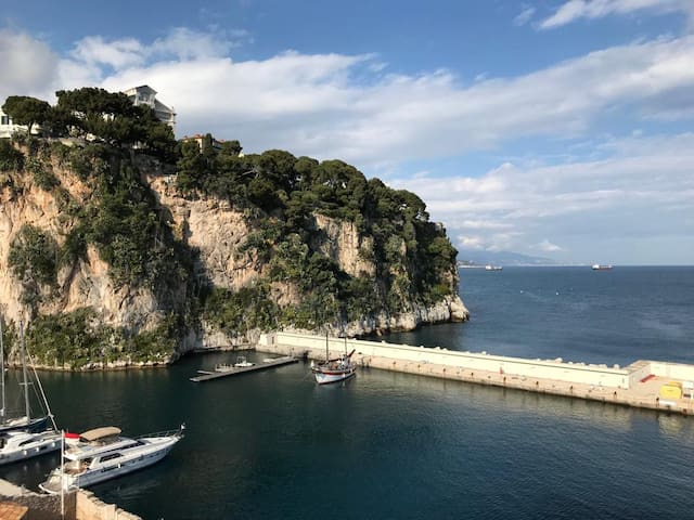 Monaco stunning sea view luxury apartment