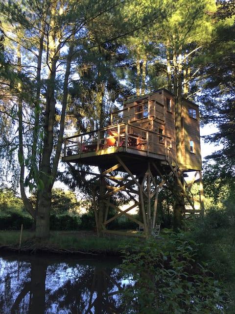Cabane dans les arbres, au bois joli