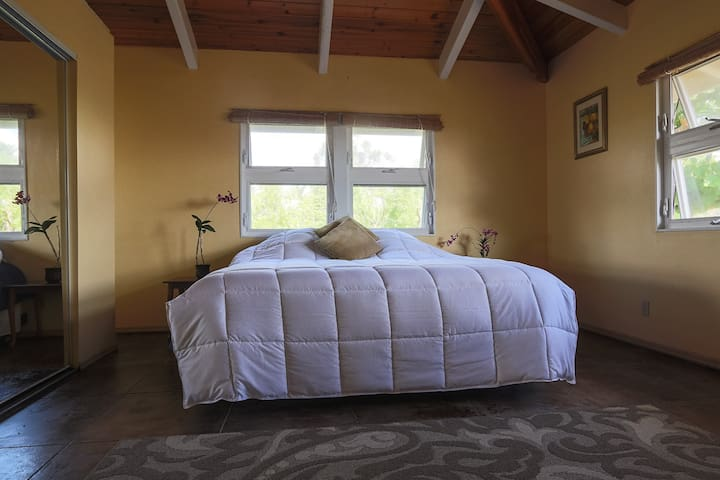 Trade Winds room with king bed, and ocean views.