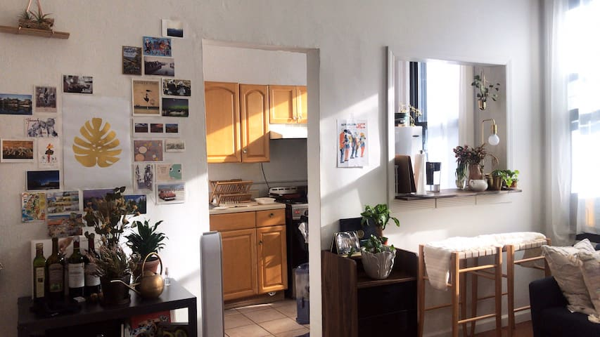 Cozy Sun-Drenched Apartment in Williamsburg
