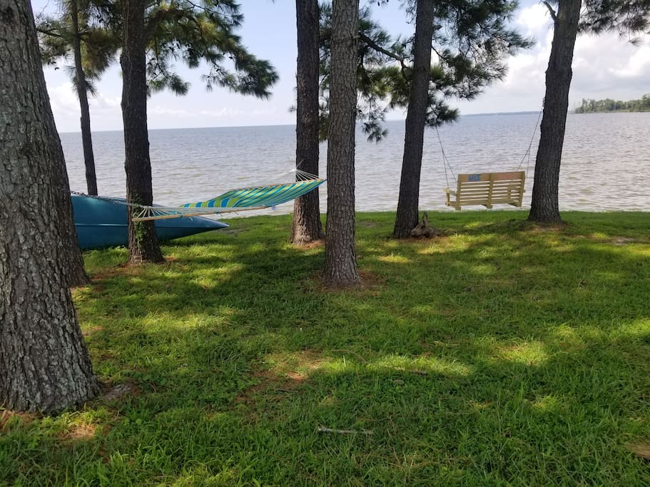 Hammock or swing under the cool pines