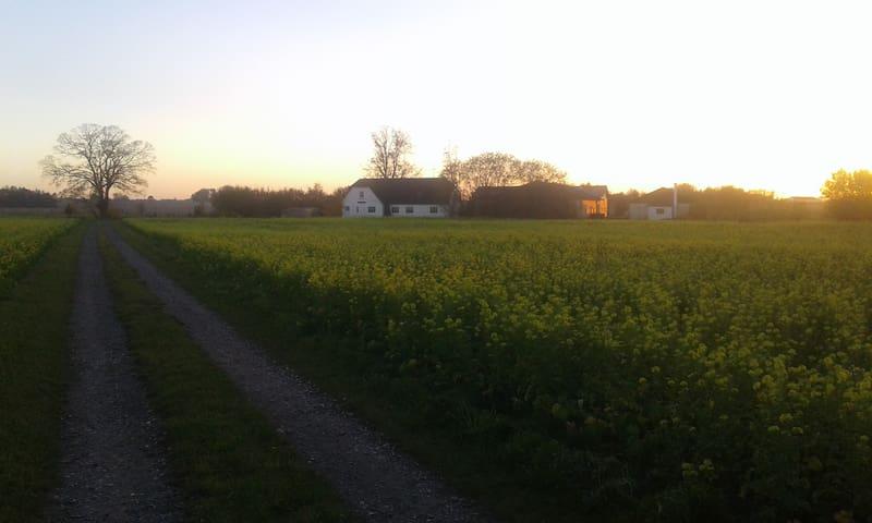 Historic Danish farm  Eged Teglværksgården