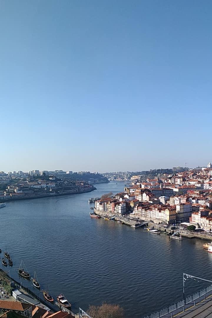 Rio Douro, visto da Serra do Pilar