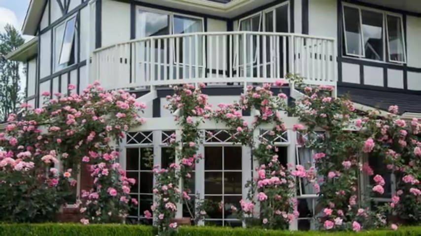 Rose House - Cambridge - Bed & Breakfast
