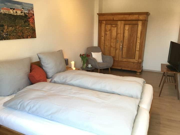 Naumburg: helle, großzügige Wohnung am Stadtpark