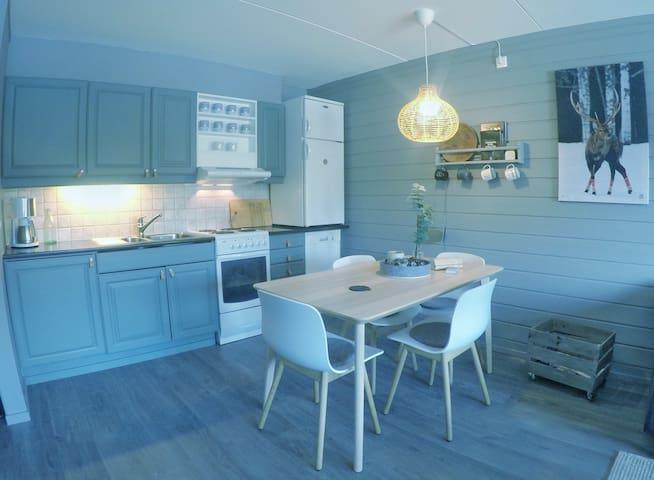 Nyoppusset og fresh leilighet i Hemsedal til leie