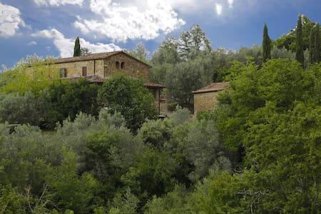 Le Logge - Green, sleeps 3 guests - Pergine Valdarno
