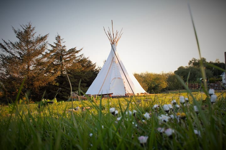 Native American Tipi in the Hills of Donegal