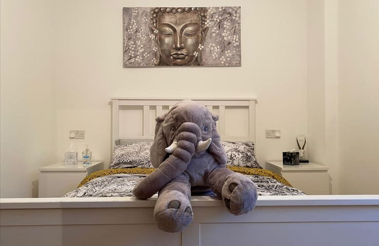 Cosy room 1 mile away from Albert Dock and center.
