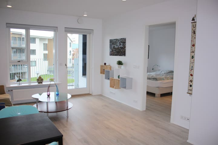 Central Rvk apt, free parking+wifi - Reykjavik - Appartement