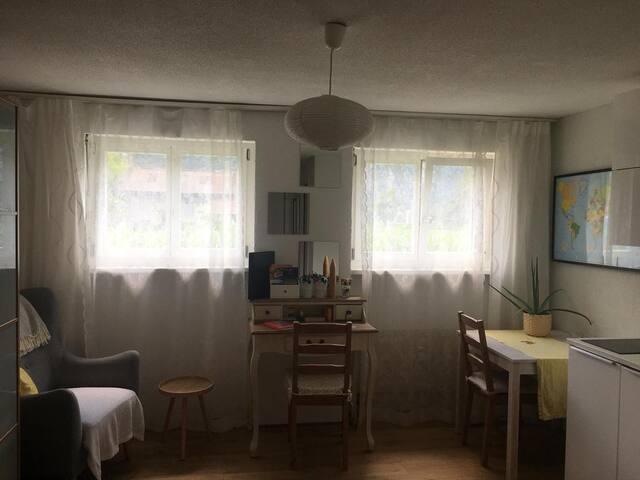 Studio mit Sicht auf Eiger, Mönch und Jungfrau