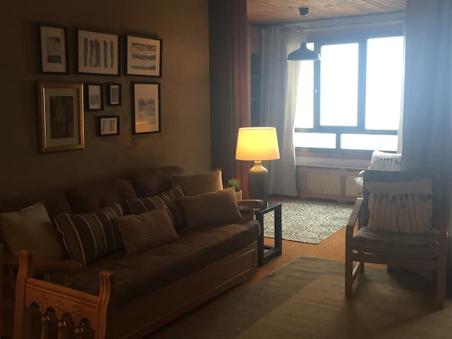 Apartamento en osca candanchu - Candanchú - Huoneisto