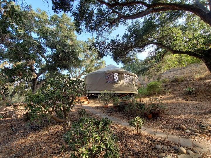 Bohemian yurt in the country