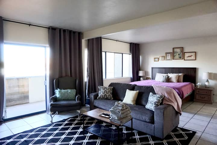 Huge Studio in Central PHX, King Bed! City VIEWS