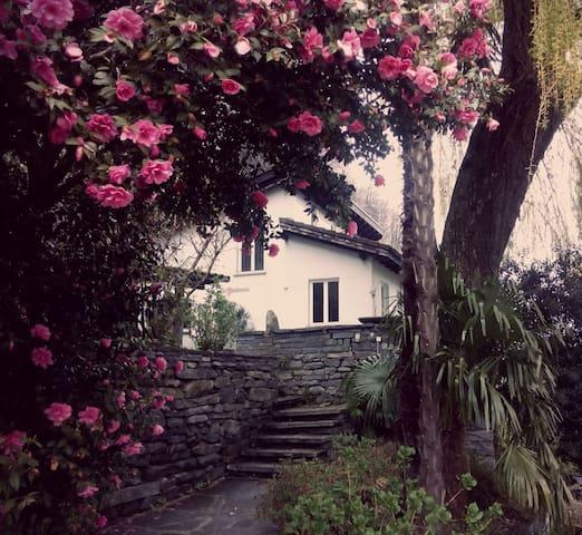 Schönes Haus mit Garten - Cavigliano - House