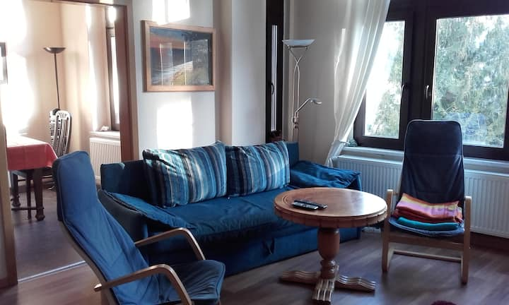 Cosy Apartment in Downtown Greiz