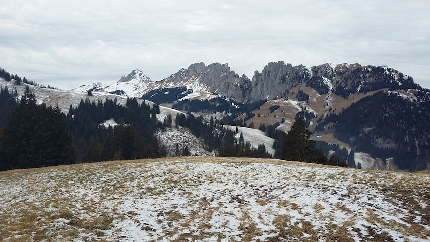 Alphütte - Boltigen - Maja