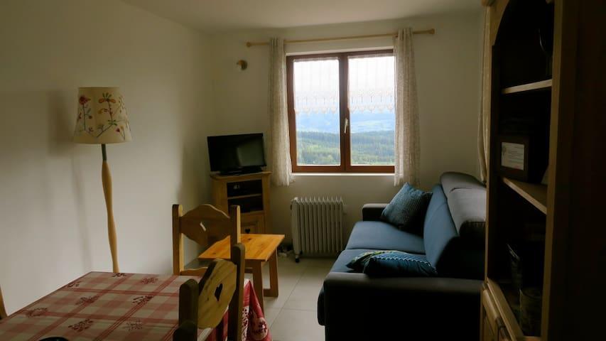 Coin salon avec canapé lit (matelas épais), télévision, lecteur DVD