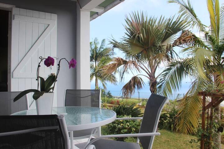 Petite-Île : maison avec vue mer et montagne