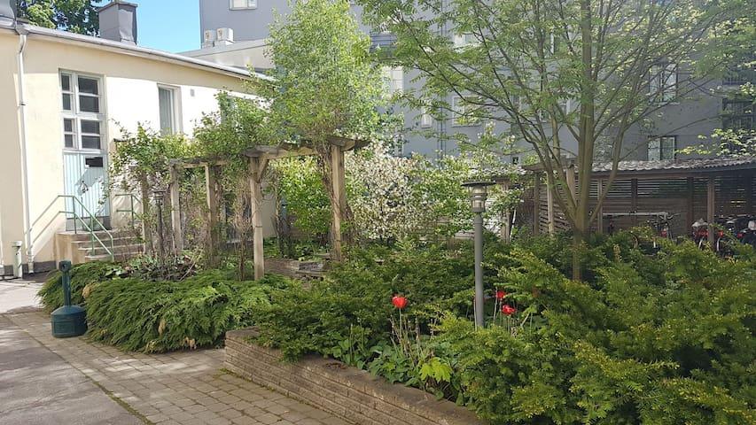 Internal yard. Little garden