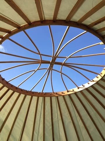 Trethevy - a delightful 18 foot yurt in an orchard