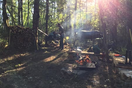 Tent Camping on 114 acre conservation farm - Shelton - Tent - 2
