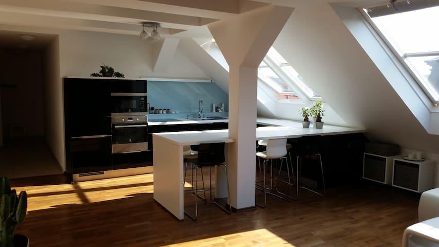 Luxury apartment Letná