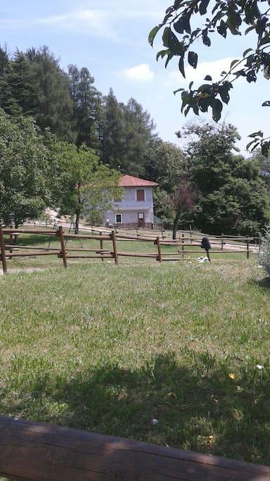 Belle persone con i propri cani villas for rent in for Piani di casa di log in stile ranch