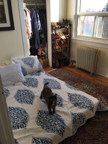 Cozy, private room in the Glebe - Ottawa - Departamento