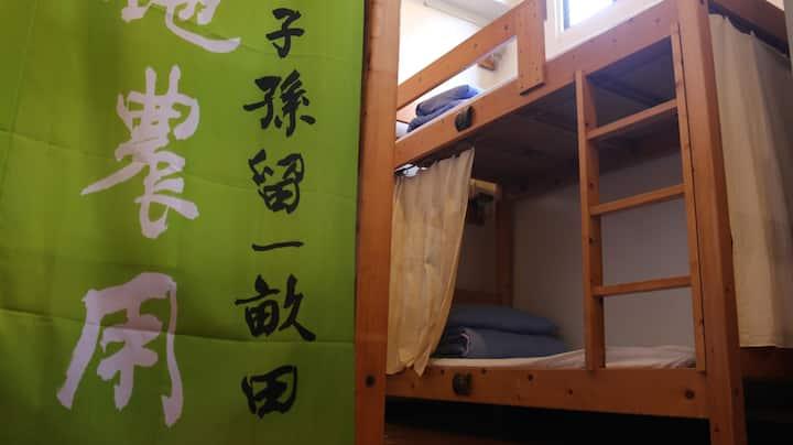 老寮背包空間─八人上下舖女生房/Girl's Dorms
