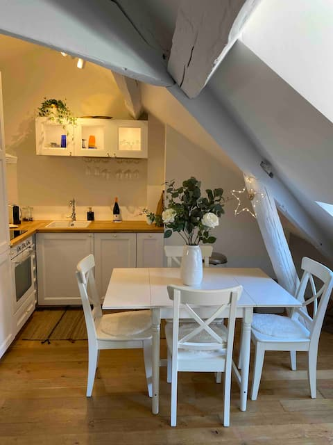 Appartement hyper centre de Montfort L'Amaury