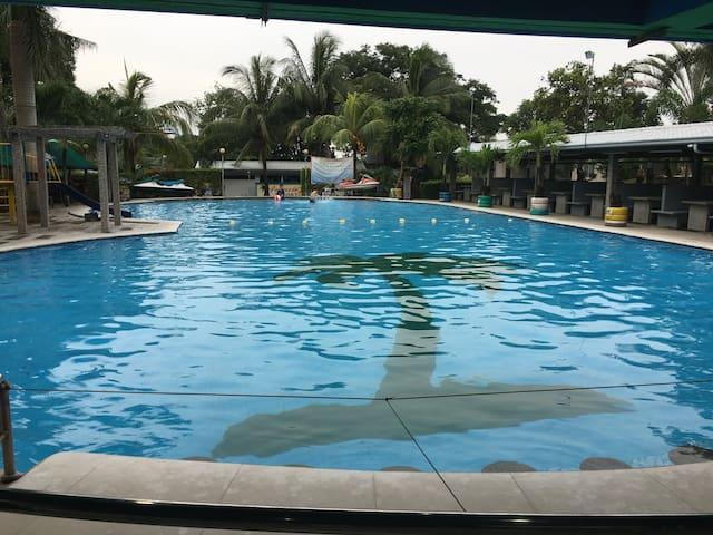 Palmas Del Sol Resort, Hotel and Restaurant/bar